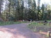 Hannagan Meadow Campground / 06-27-2017