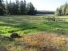 Hannagan Meadow / 06-27-2017