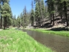 Horse Springs Campground