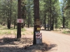 Horseshoe Cienega Lake Campground