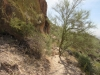 Wind Cave Trail